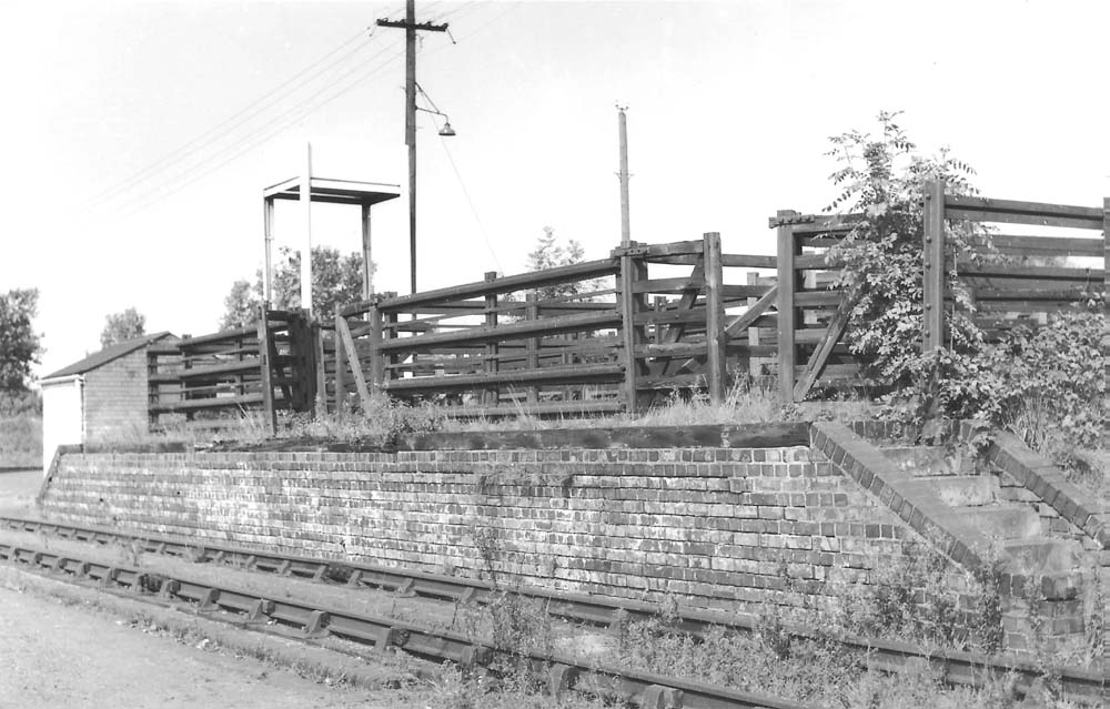 Shirley Station Cattle Pens At Shirley With Water Tank